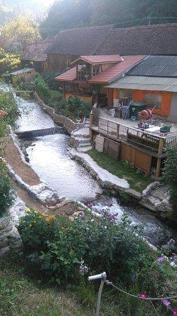 Sibiel, Roemenië: DSC_0070_1_large.jpg