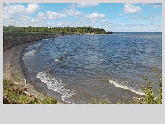 Waterport, Estado de Nueva York: Shoreline at Lakeside Beach State Park