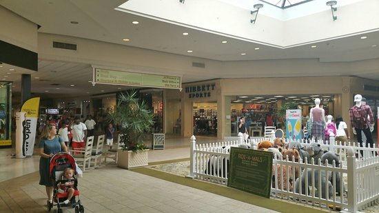magnolia mall florence all you need to know before you