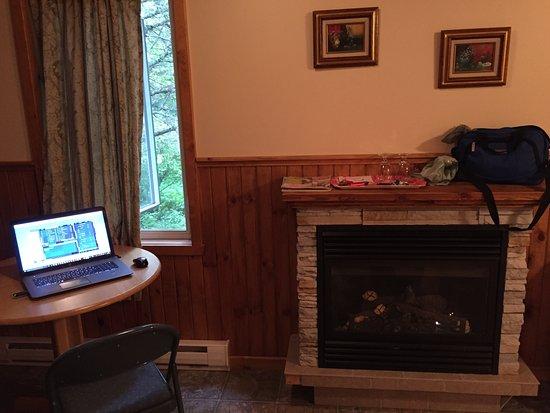 Auberge Aux Toits Rouges: Foyer au gaz. Table à dîner. Fenêtre ouvre sur le bois.