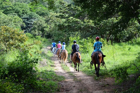 Gulf of Papagayo, Kosta Rika: Horse back ride adventure tour