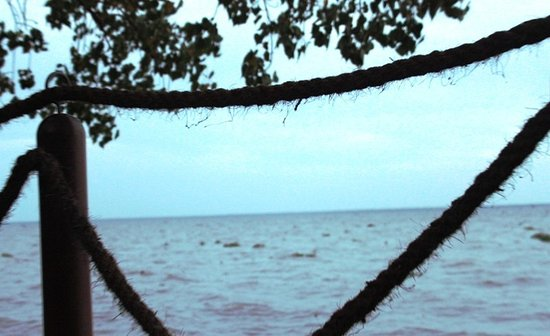 The Zuri Kumarakom: اطلالة الفلة على البحيرة