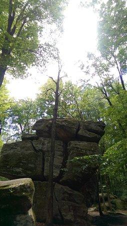 Allegany State Park: IMAG4241_large.jpg