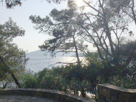 Club Med Bodrum Palmiye-bild