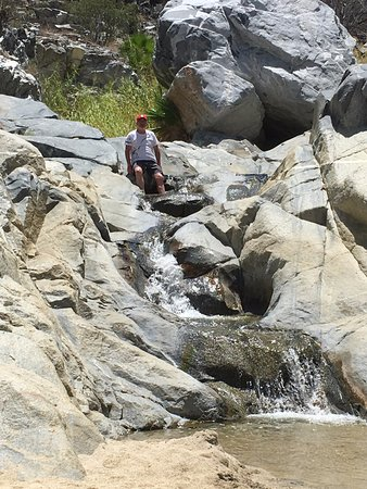 Los Barriles, Mexico: drove ton the desert and found this awesome waterfall !!