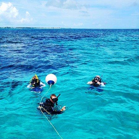 Marsh Harbour, Остров Большой Абако: Divers
