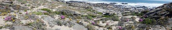 Zdjęcie Northern Cape
