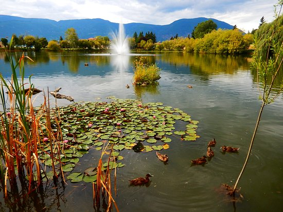 Salmon Arm, Kanada: McGuire Lake