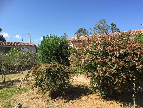 Residence Pino d'Oru : photo1.jpg