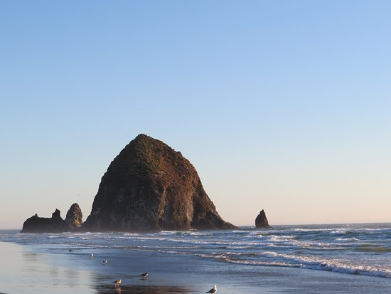 Cannon Beach 2020 All You Need To