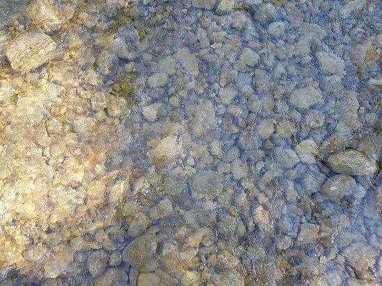 Eldorado Park: Clean waters of Creditview river