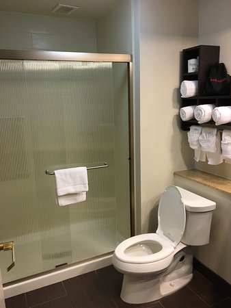 Hampton Inn & Suites New Orleans Downtown (French Quarter Area): photo1.jpg