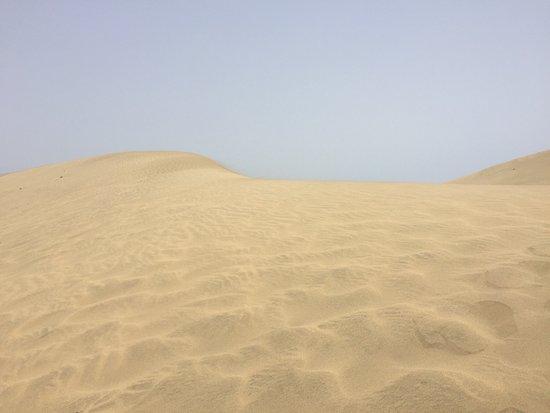 Las Dunas: photo0.jpg