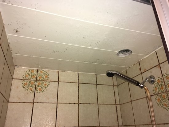 Trient, Schweiz: Mold in shower