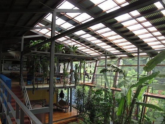 Celeste Mountain Lodge: Espace intérieur (cuisine, salle à manger, espaces détente)