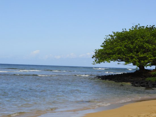 Hanalei Bay Resort: The beach that is shared with the Regis Hotel