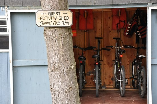 Swanton, MD: The guest activity shed has all your outdoor needs!