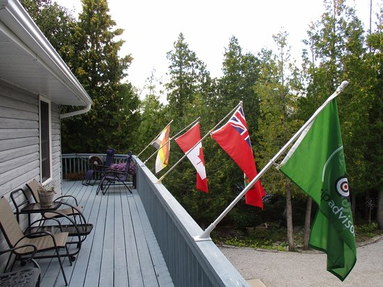 Bear Cove Bed and Breakfast: ... and a bear flag too!!