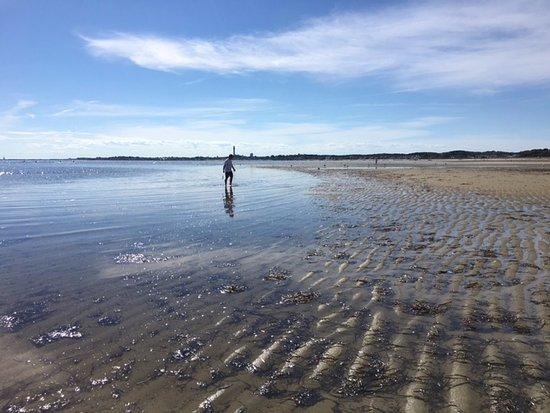 Kalmar Village: Sandbars and hermit crab catching. So fun and relaxing.