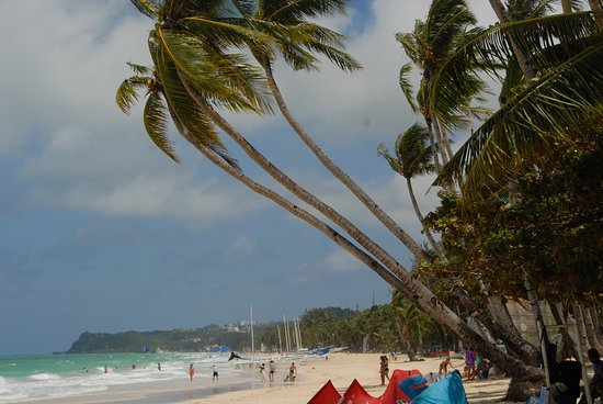 Blue Mango Inn: beach