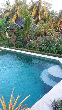 pool im garten - picture of buddha home, ubud - tripadvisor, Garten und erstellen