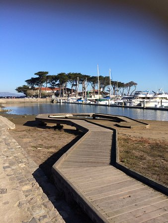 Marina Green San Francisco Ca Top Tips Before You Go