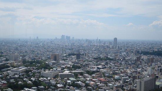 東山スカイタワー, 展望台からの眺め