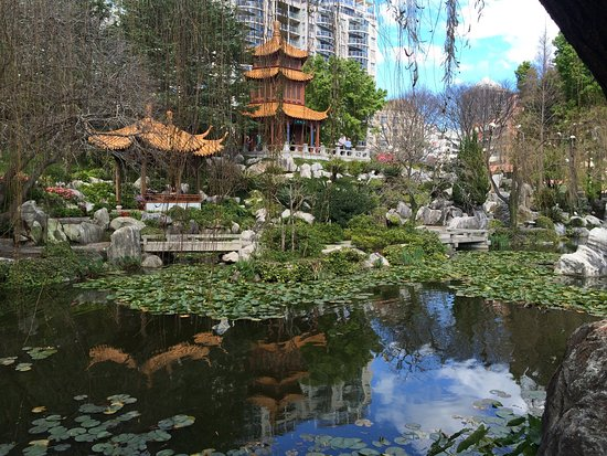 Reminded Me Of My Trip To China It S Like Being In The Summer Palace Near Beijing Izobrazhenie Chinese Garden Of Friendship Sidnej Tripadvisor