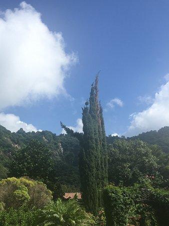 Foto Hotel Atitlan