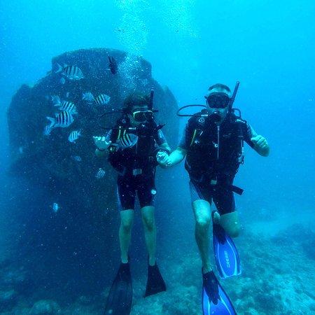 Reef Oasis Viva Dominican