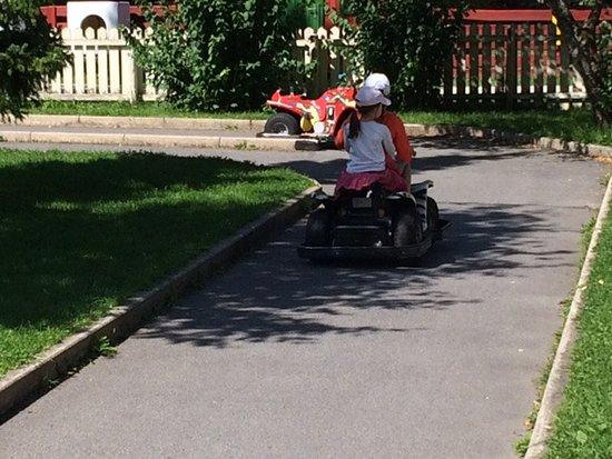 Mürzsteg, Австрия: Elektroautos (1€ für ca 8 Min Fahrt)