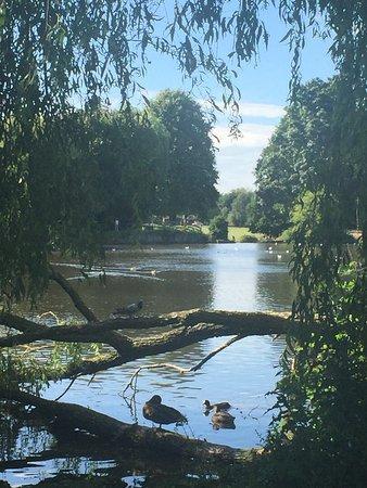 Elmdon Park Photo