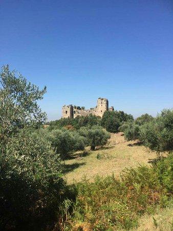 Castello di San Felice: Testimone del tempo