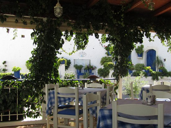 Taverna Aposperida : Excellent staff, food and authentic Greek scenery.