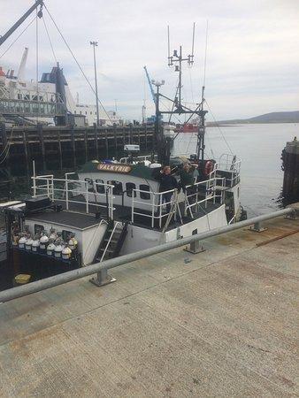 MV Valkyrie