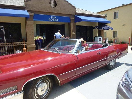 J.Marc au volant de la Cadillac - Picture of Ols Tours, Los ...