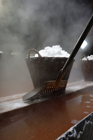 Laesoe Island, Danimarca: Salt i lange baner
