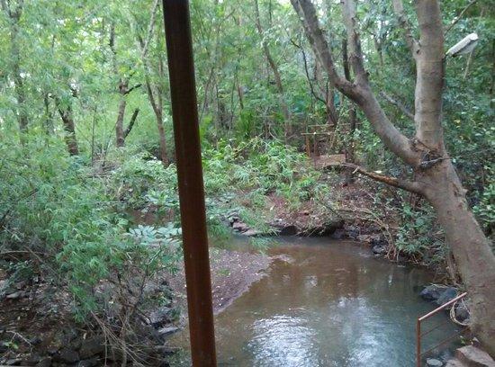 Hidden Village: View from Wooden Bridge