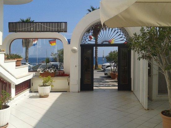 Hotel Albatros: Ingresso albergo