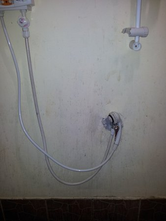 Sea Salad Resort: shower head, stains on the wall