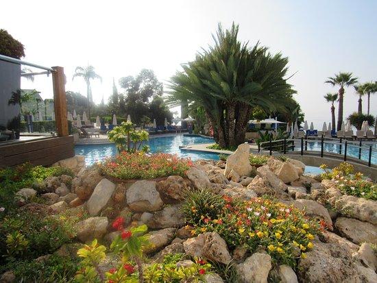 View of rockery and over pool area