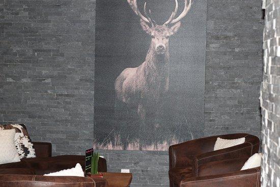 Montana Chalet Hotel : salon