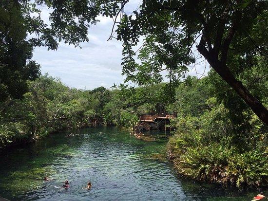 Yucatan, Meksyk: cenote