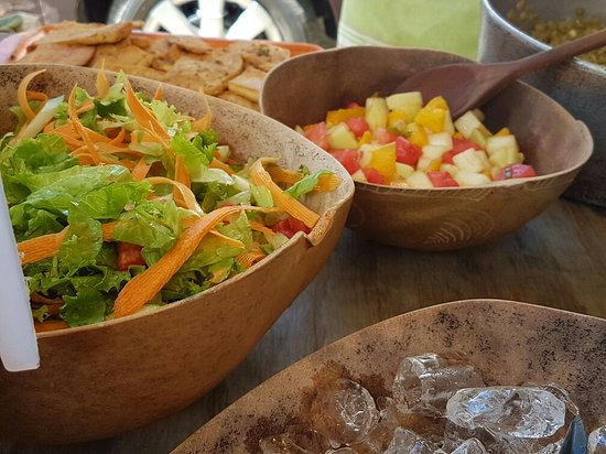 Saint Ann Parish, Jamaica: Healthy Lunch & Friends enjoying a day at Jamaica Natural Gardens
