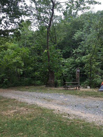 Our recent trip to Gooney Creek Campground. We were in spot 23 and were very close to the creek.