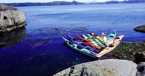 Kingfisher Wilderness Adventures - Orca Waters Kayak Day Trips: Lunch stops on rock perches overlooking Johnstone Stait