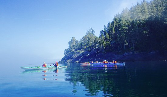 Kingfisher Wilderness Adventures - Orca Waters Kayak Day Trips: Paddling on waters of glass enjoying beautiful rugged scenery