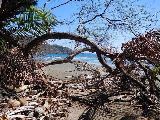 Tambor, Kosta Rika: Strand
