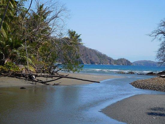 Tambor, Kosta Rika: Uitzicht van mangrove naar strand