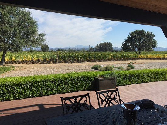 Benovia Winery : photo1.jpg